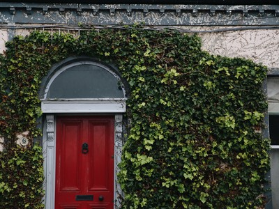 Will House Prices Fall in Ireland Due to Coronavirus?